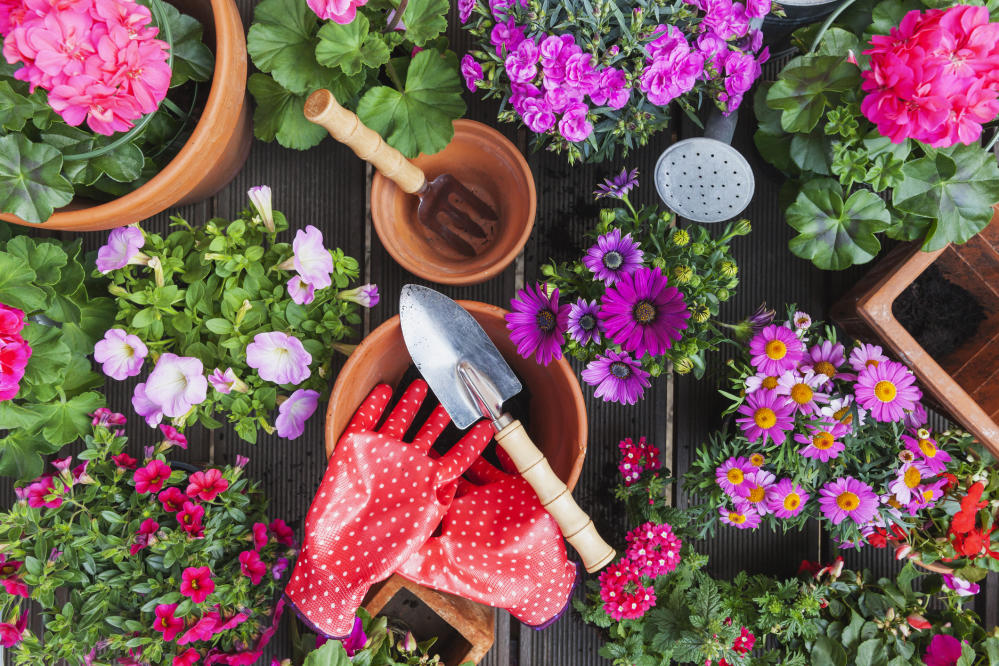 Get your Garden Summer Ready